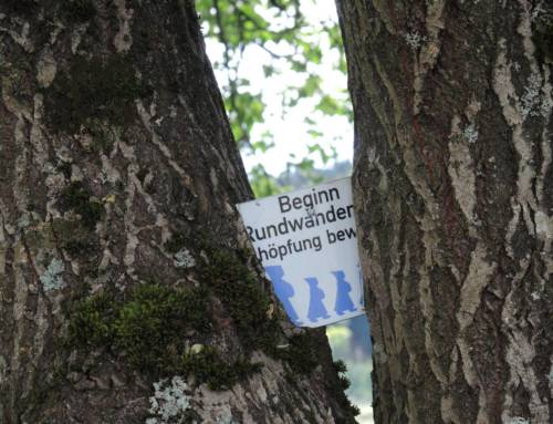 Ökumenischer Pilgertag im September